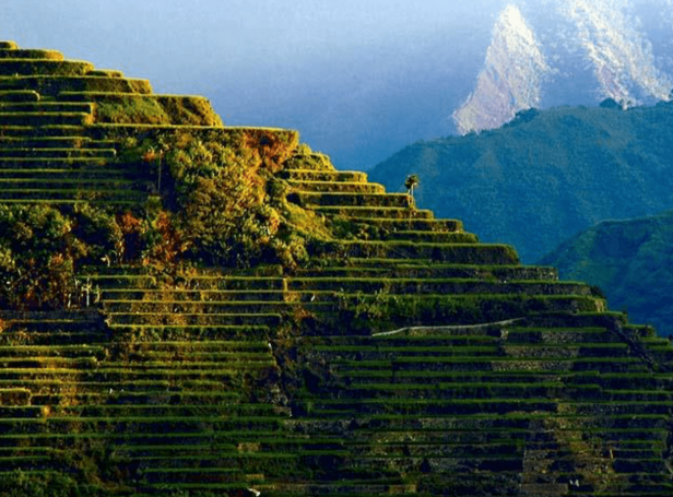 Rice Terraces of the Philippine Cordilleras - 10 Things you didn't know about the Philippines
